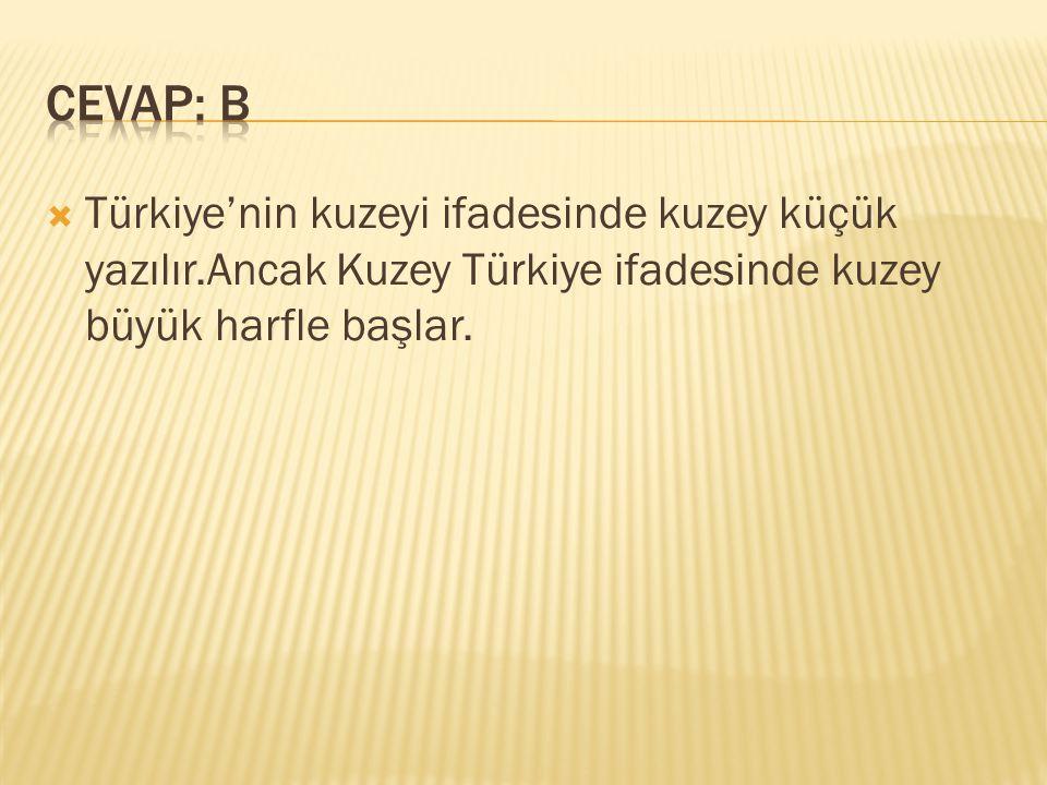 CEVAP: B Türkiye'nin kuzeyi ifadesinde kuzey küçük yazılır.Ancak Kuzey Türkiye ifadesinde kuzey büyük harfle başlar.