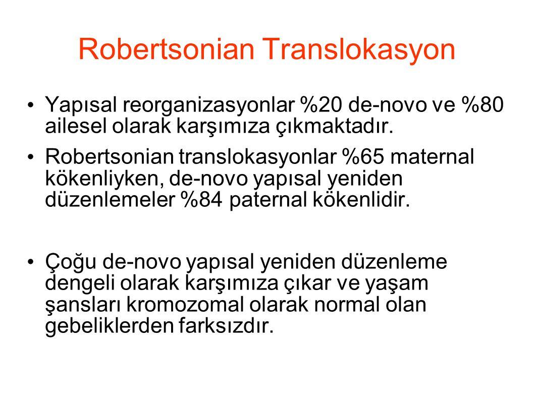 Robertsonian Translokasyon