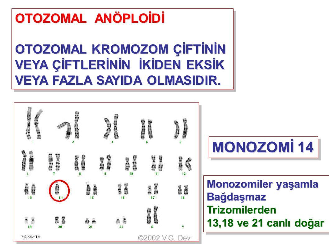 MONOZOMİ 14 OTOZOMAL ANÖPLOİDİ OTOZOMAL KROMOZOM ÇİFTİNİN