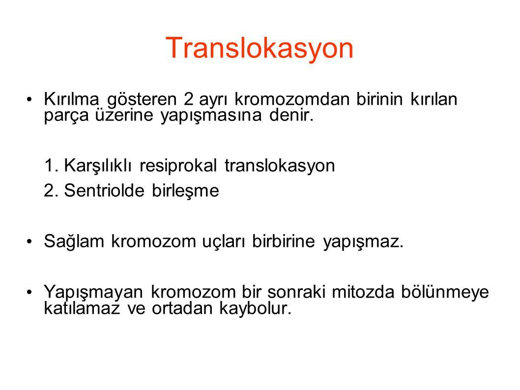 Translokasyon Kırılma gösteren 2 ayrı kromozomdan birinin kırılan parça üzerine yapışmasına denir.