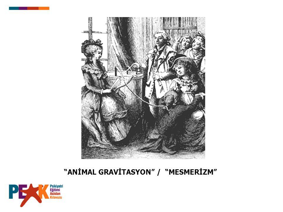 ANİMAL GRAVİTASYON / MESMERİZM