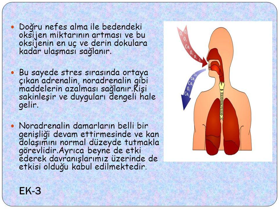 Doğru nefes alma ile bedendeki oksijen miktarının artması ve bu oksijenin en uç ve derin dokulara kadar ulaşması sağlanır.