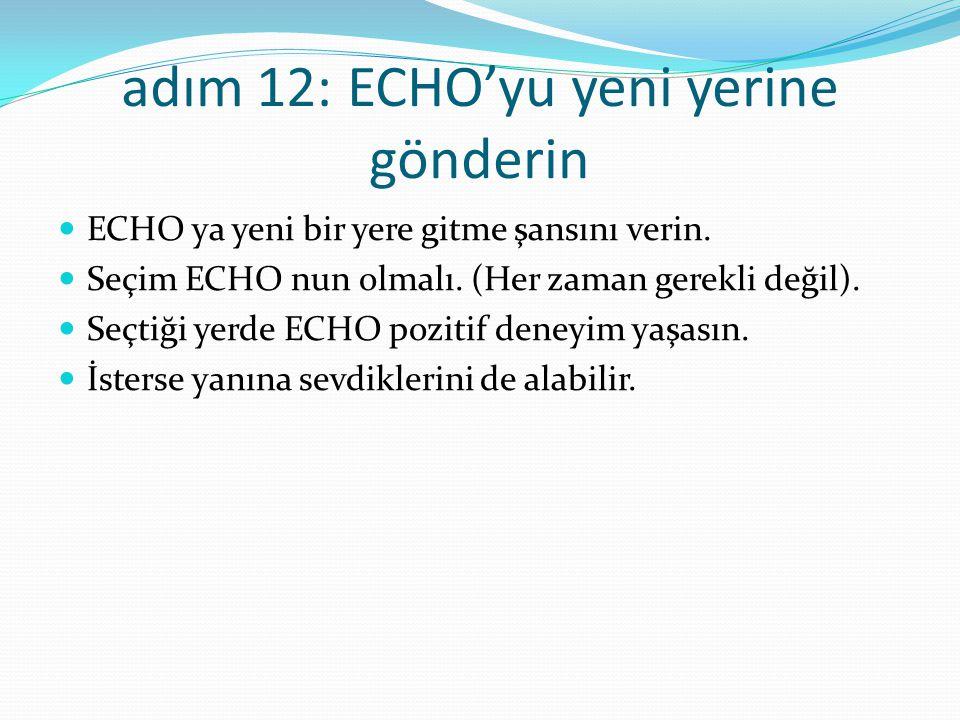 adım 12: ECHO'yu yeni yerine gönderin