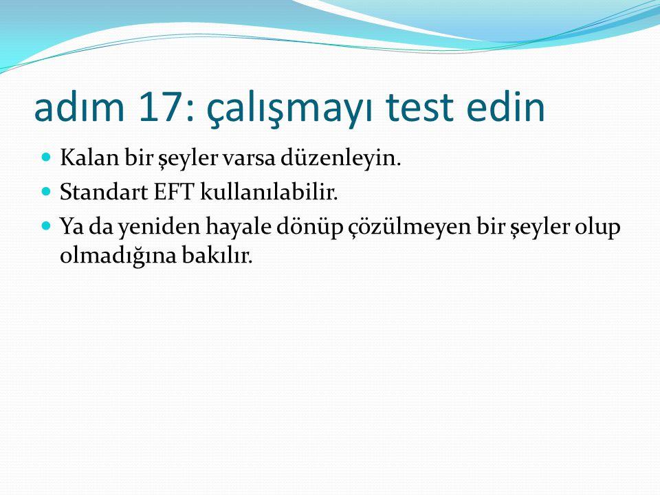 adım 17: çalışmayı test edin