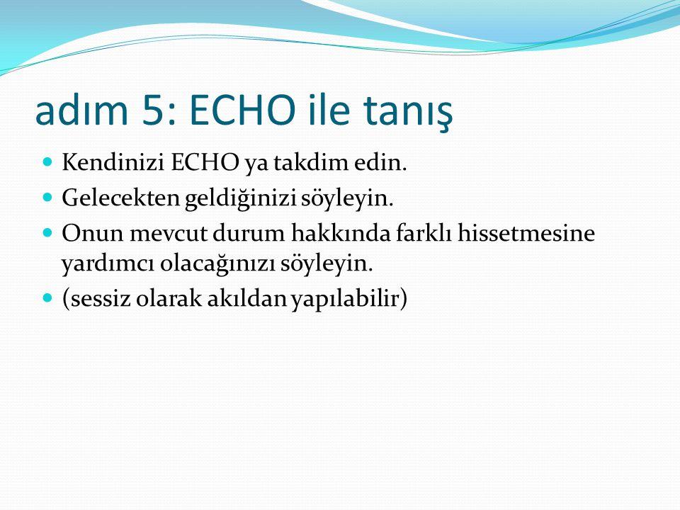 adım 5: ECHO ile tanış Kendinizi ECHO ya takdim edin.