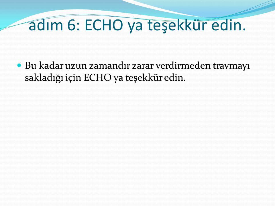 adım 6: ECHO ya teşekkür edin.