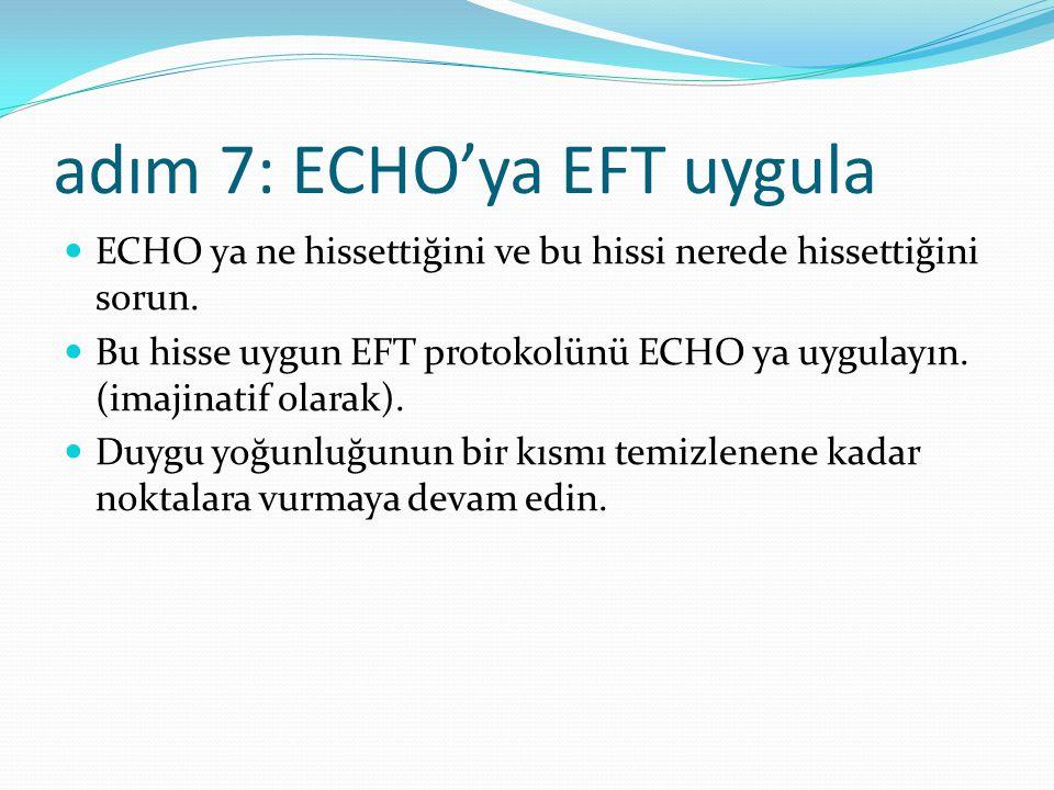 adım 7: ECHO'ya EFT uygula