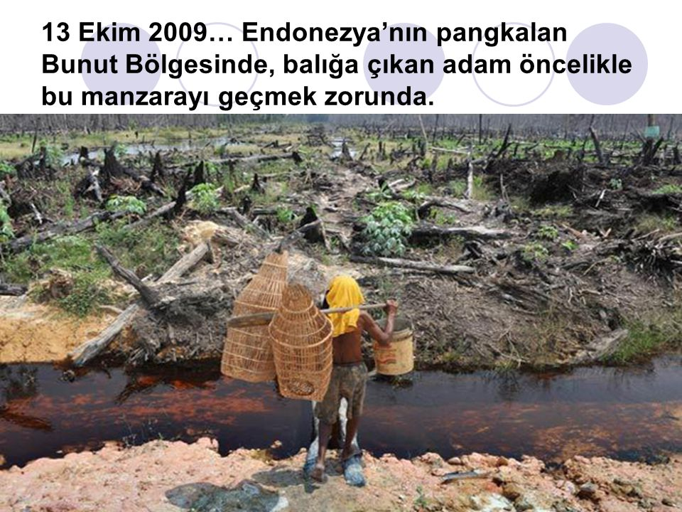 13 Ekim 2009… Endonezya'nın pangkalan Bunut Bölgesinde, balığa çıkan adam öncelikle bu manzarayı geçmek zorunda.