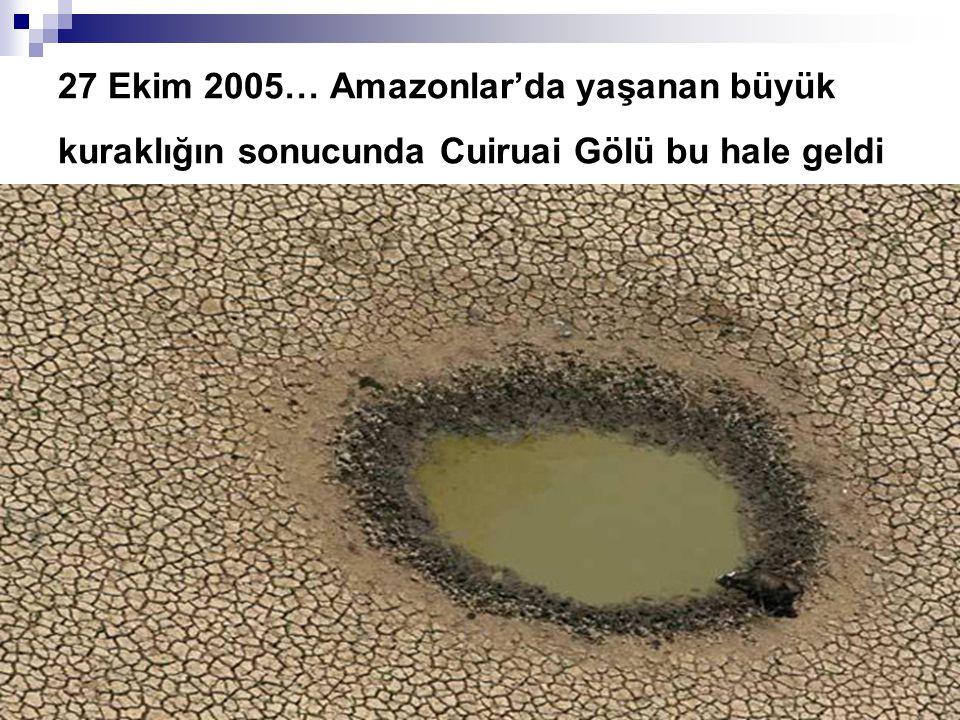 27 Ekim 2005… Amazonlar'da yaşanan büyük kuraklığın sonucunda Cuiruai Gölü bu hale geldi