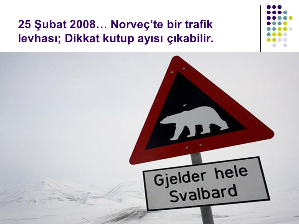 25 Şubat 2008… Norveç'te bir trafik levhası; Dikkat kutup ayısı çıkabilir.