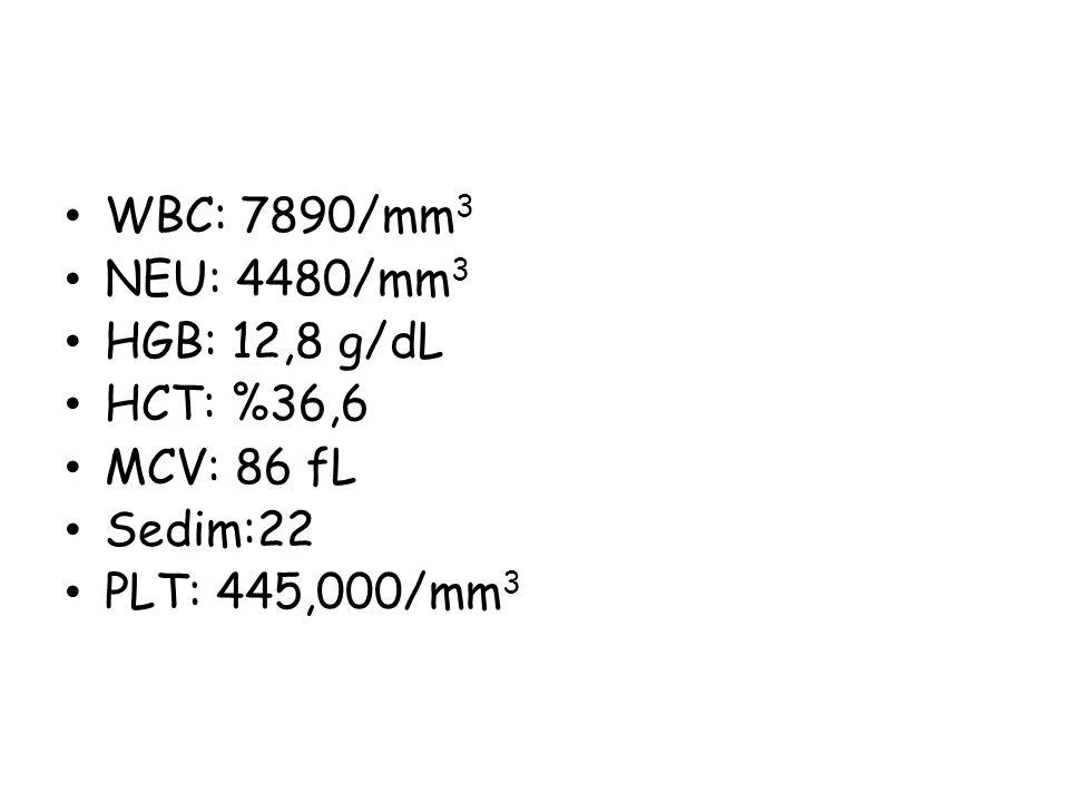 WBC: 7890/mm3 NEU: 4480/mm3 HGB: 12,8 g/dL HCT: %36,6 MCV: 86 fL Sedim:22 PLT: 445,000/mm3
