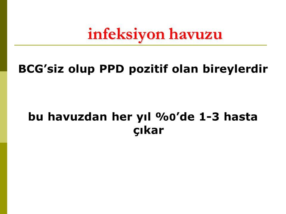 infeksiyon havuzu BCG'siz olup PPD pozitif olan bireylerdir