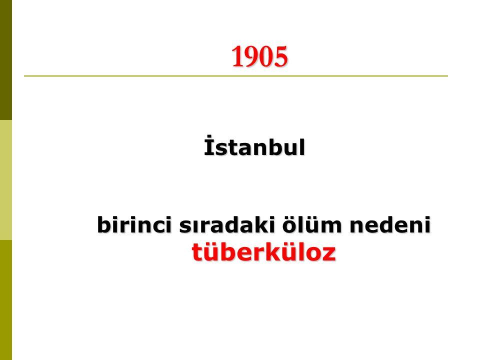 İstanbul birinci sıradaki ölüm nedeni tüberküloz