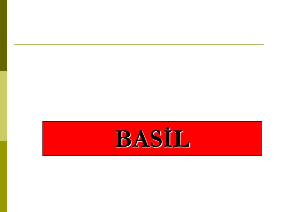 BASİL