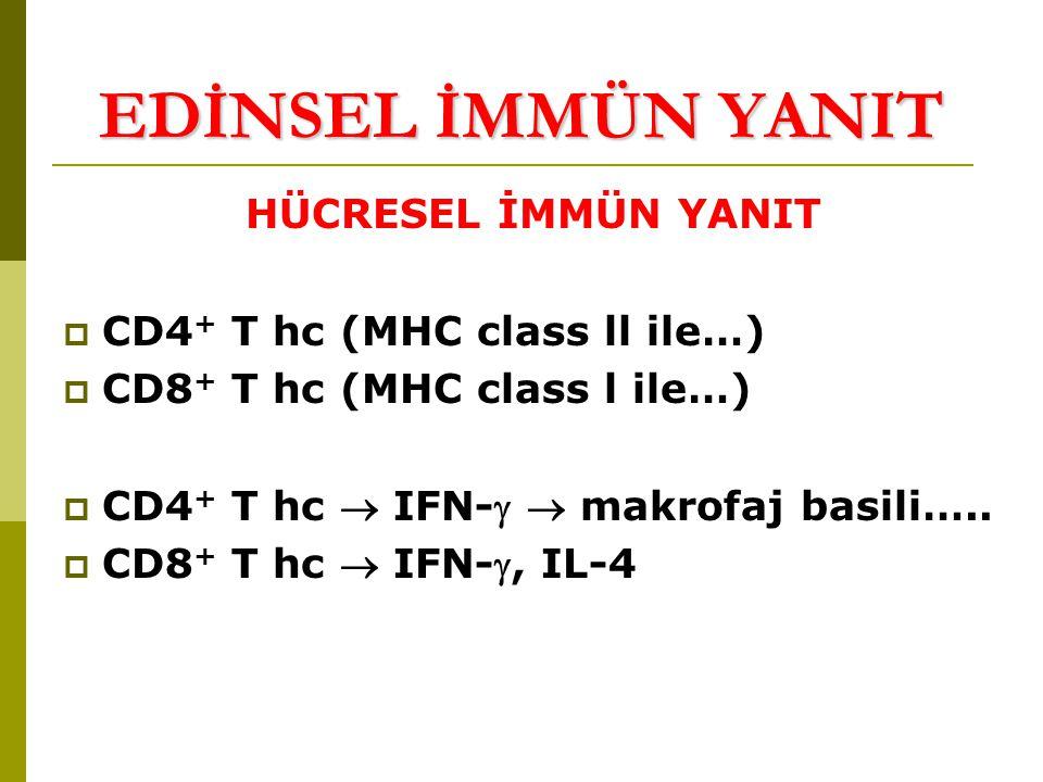 EDİNSEL İMMÜN YANIT HÜCRESEL İMMÜN YANIT CD4+ T hc (MHC class ll ile…)