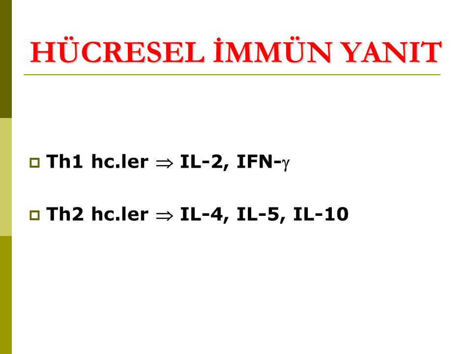 HÜCRESEL İMMÜN YANIT Th1 hc.ler  IL-2, IFN-