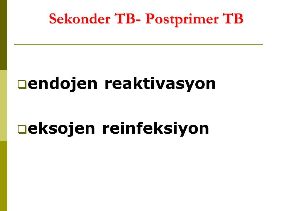 Sekonder TB- Postprimer TB