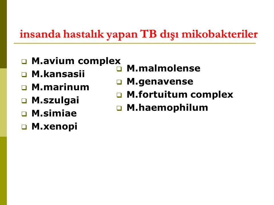 insanda hastalık yapan TB dışı mikobakteriler