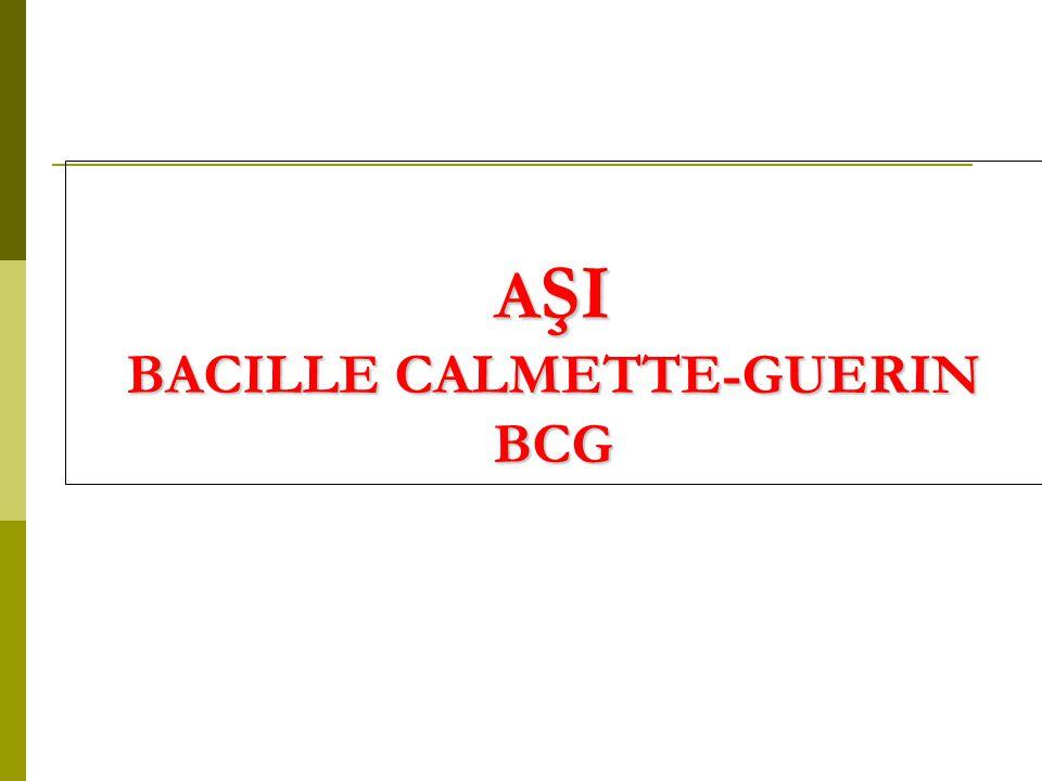AŞI BACILLE CALMETTE-GUERIN BCG