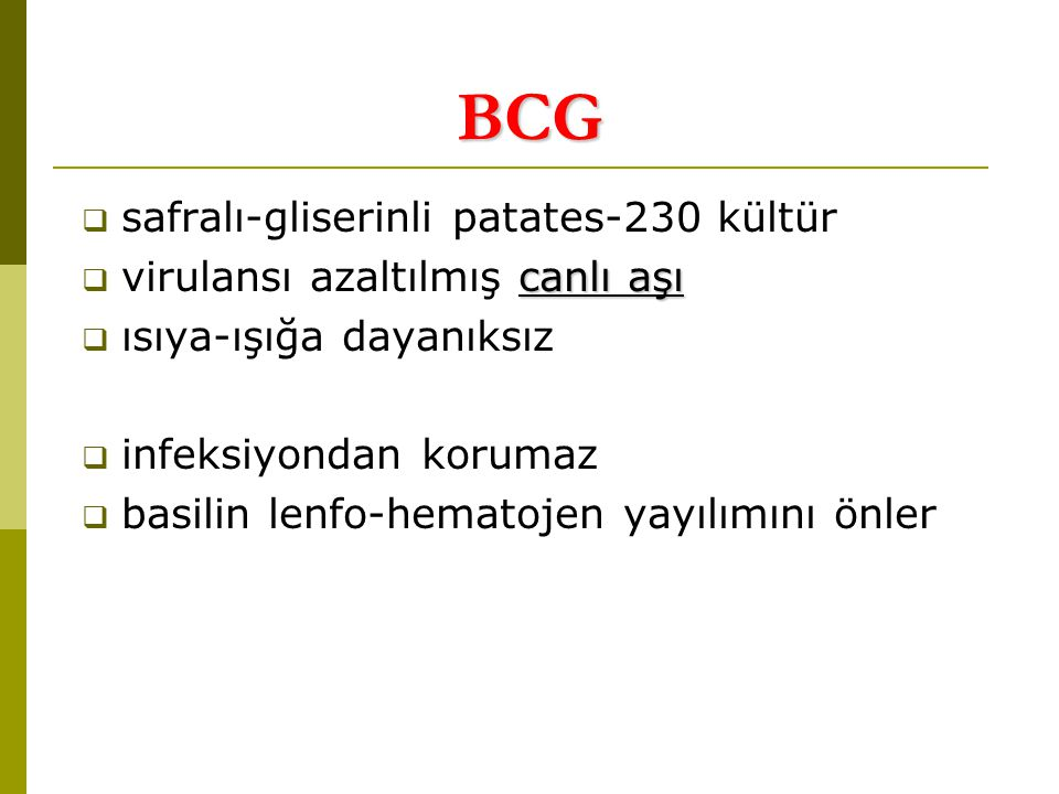 BCG safralı-gliserinli patates-230 kültür