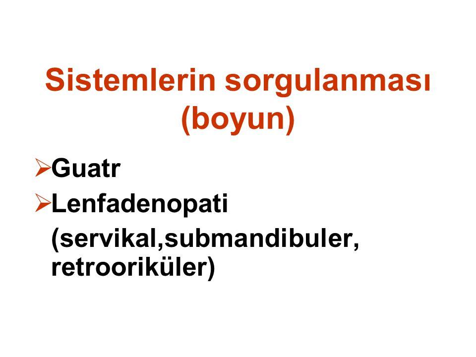 Sistemlerin sorgulanması (boyun)