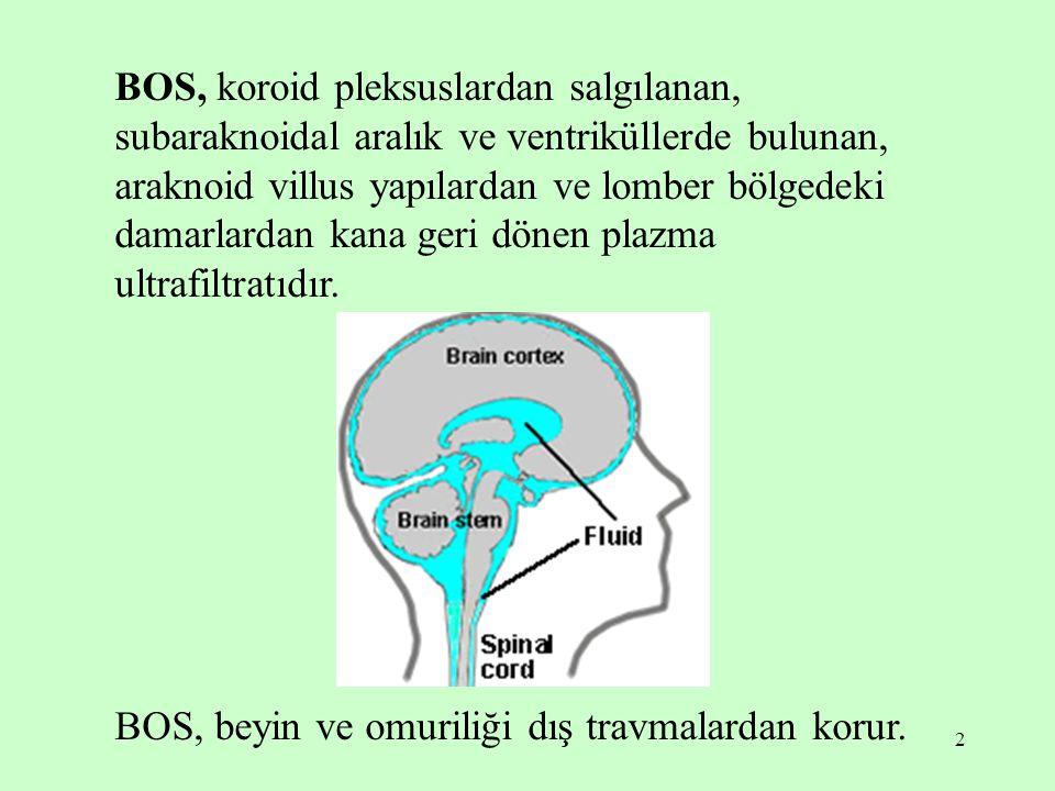 BOS, koroid pleksuslardan salgılanan, subaraknoidal aralık ve ventriküllerde bulunan, araknoid villus yapılardan ve lomber bölgedeki damarlardan kana geri dönen plazma ultrafiltratıdır.