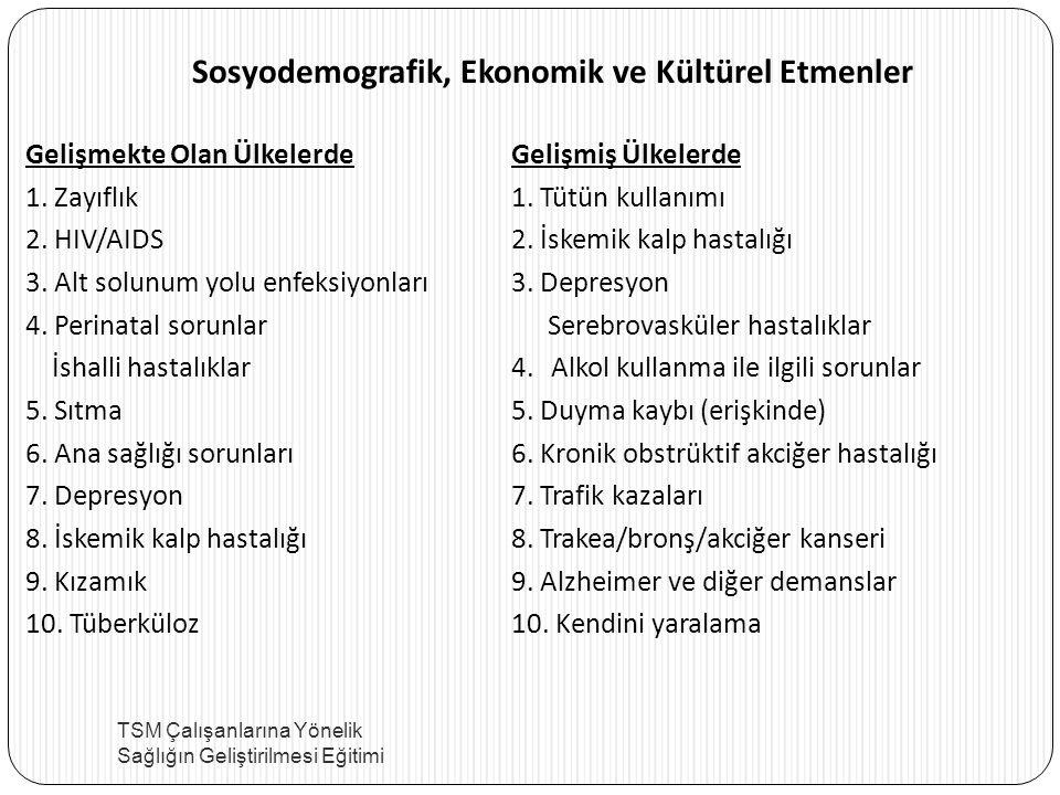Sosyodemografik, Ekonomik ve Kültürel Etmenler