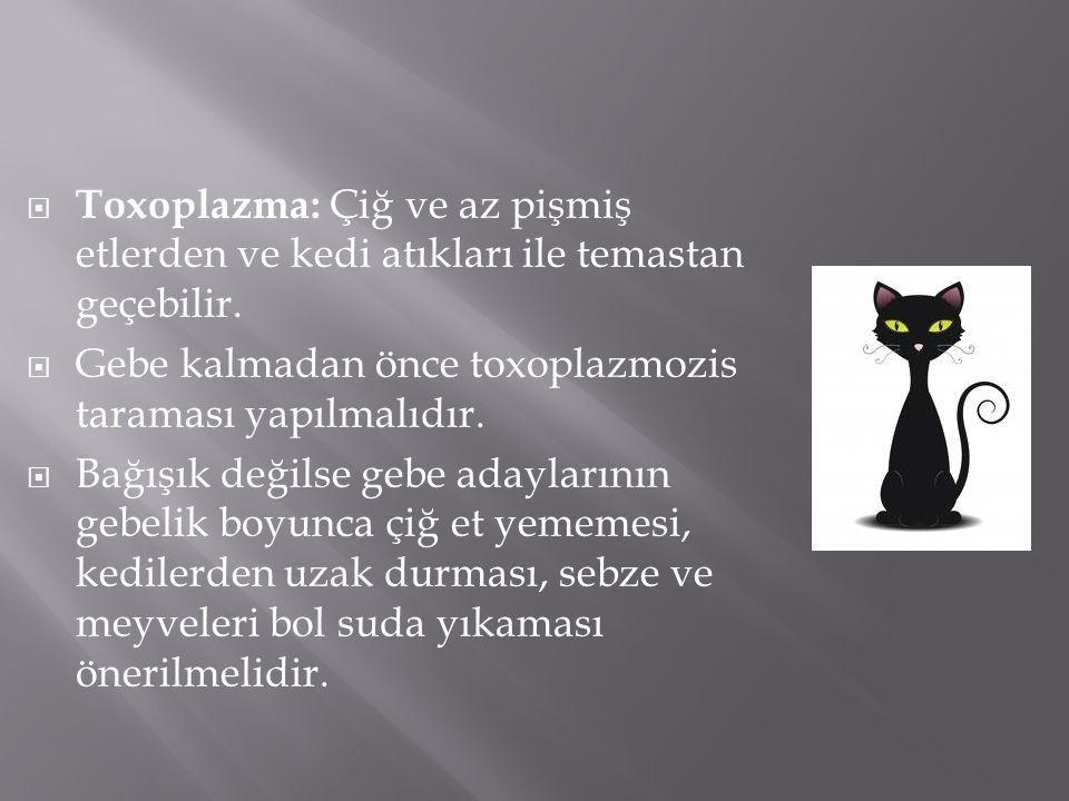 Toxoplazma: Çiğ ve az pişmiş etlerden ve kedi atıkları ile temastan geçebilir.