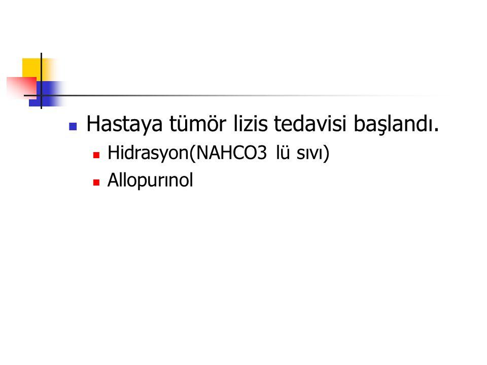 Hastaya tümör lizis tedavisi başlandı.