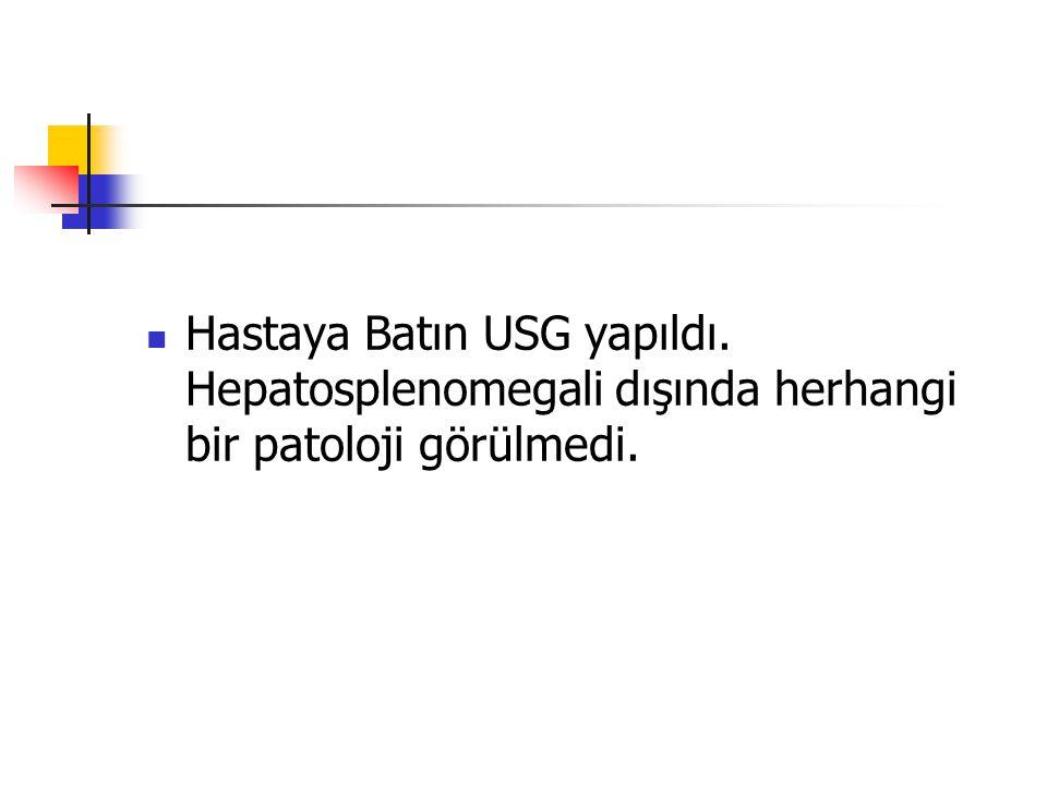 Hastaya Batın USG yapıldı