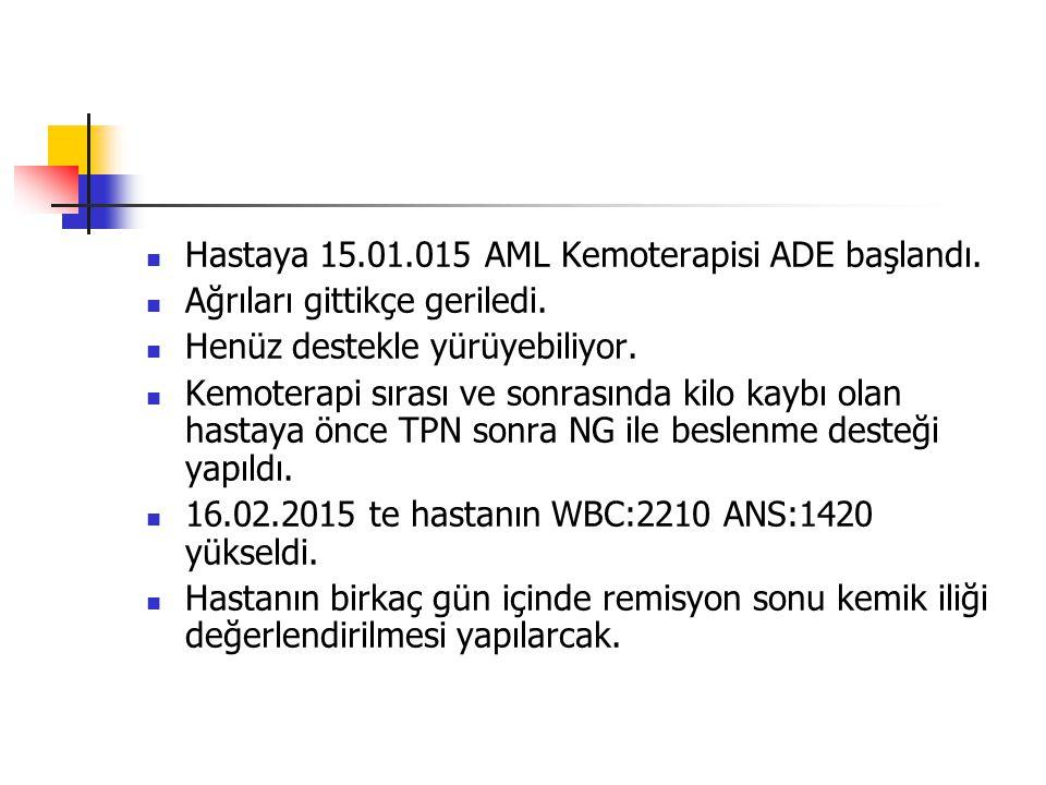 Hastaya 15.01.015 AML Kemoterapisi ADE başlandı.