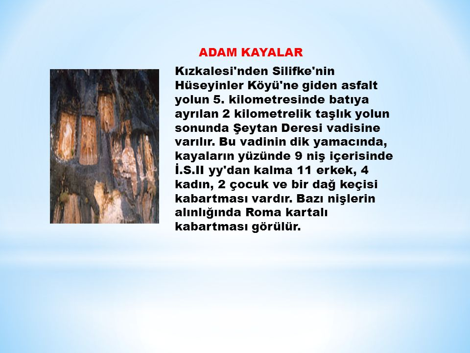 ADAM KAYALAR