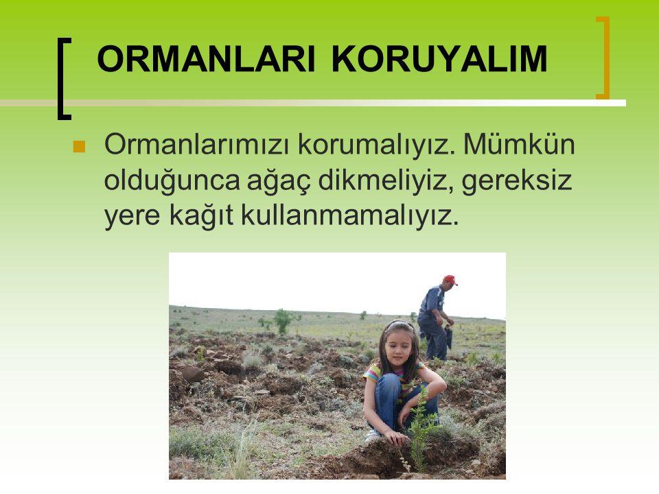 ORMANLARI KORUYALIM Ormanlarımızı korumalıyız.