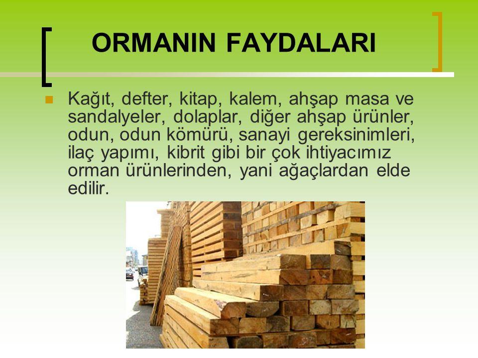 ORMANIN FAYDALARI
