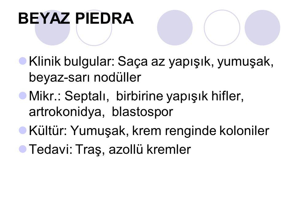 BEYAZ PIEDRA Klinik bulgular: Saça az yapışık, yumuşak, beyaz-sarı nodüller. Mikr.: Septalı, birbirine yapışık hifler, artrokonidya, blastospor.