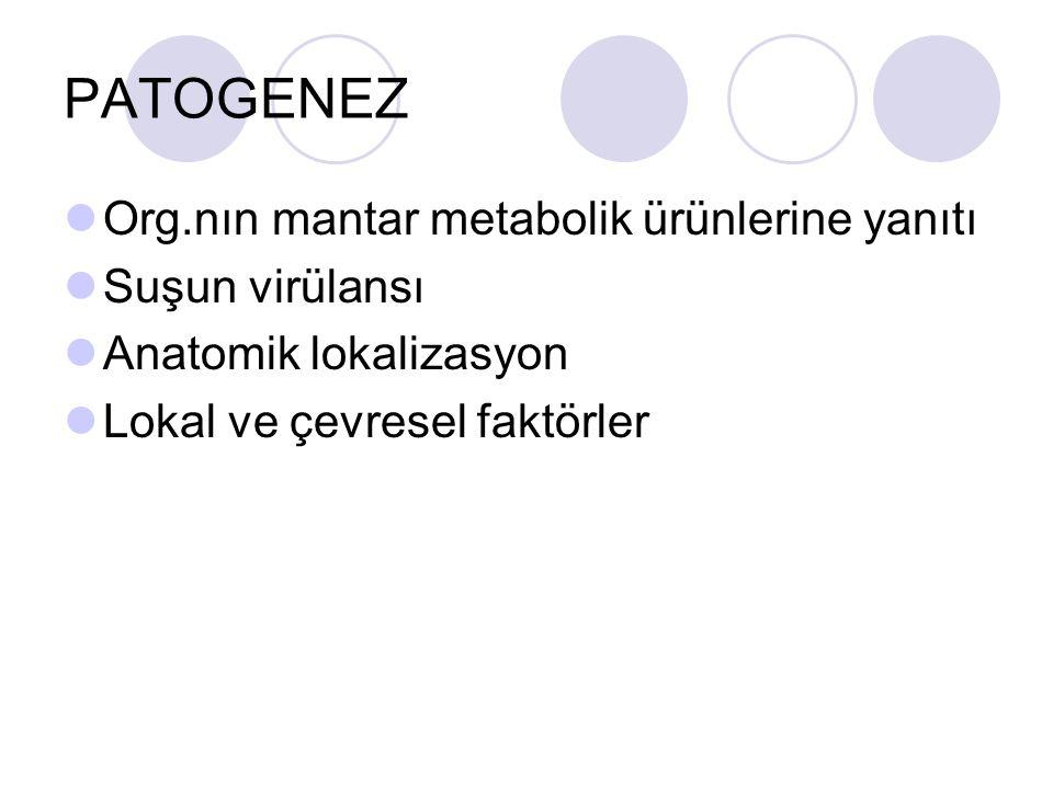 PATOGENEZ Org.nın mantar metabolik ürünlerine yanıtı Suşun virülansı