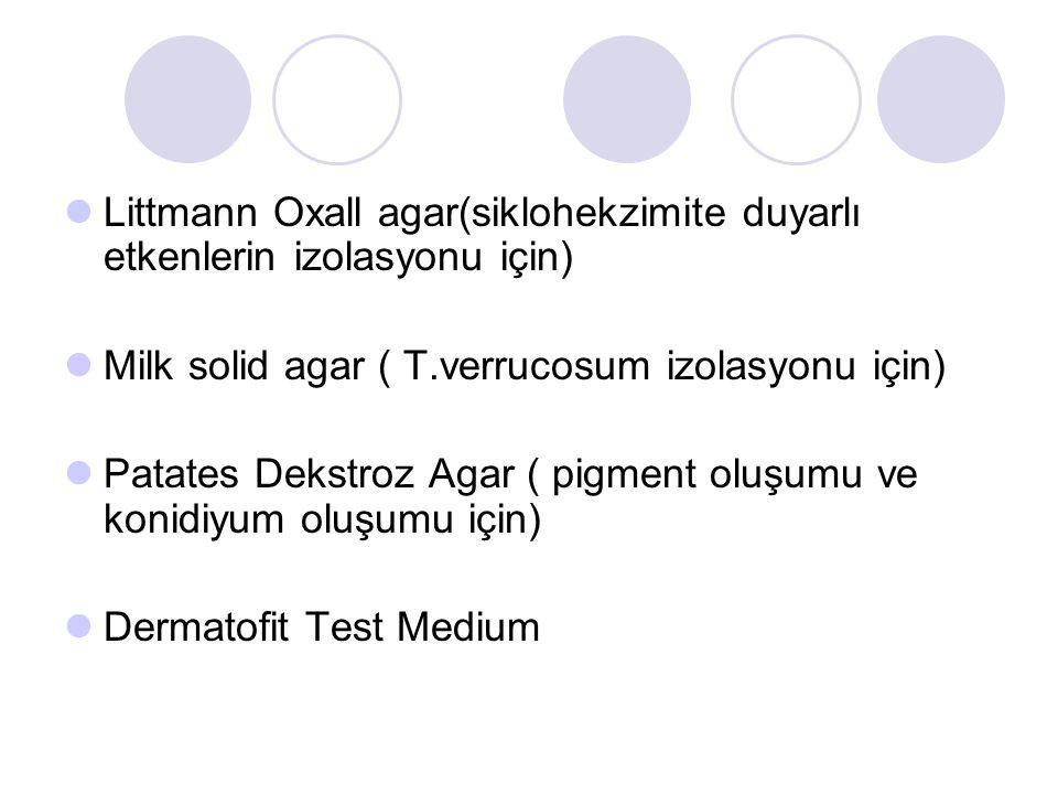 Littmann Oxall agar(siklohekzimite duyarlı etkenlerin izolasyonu için)