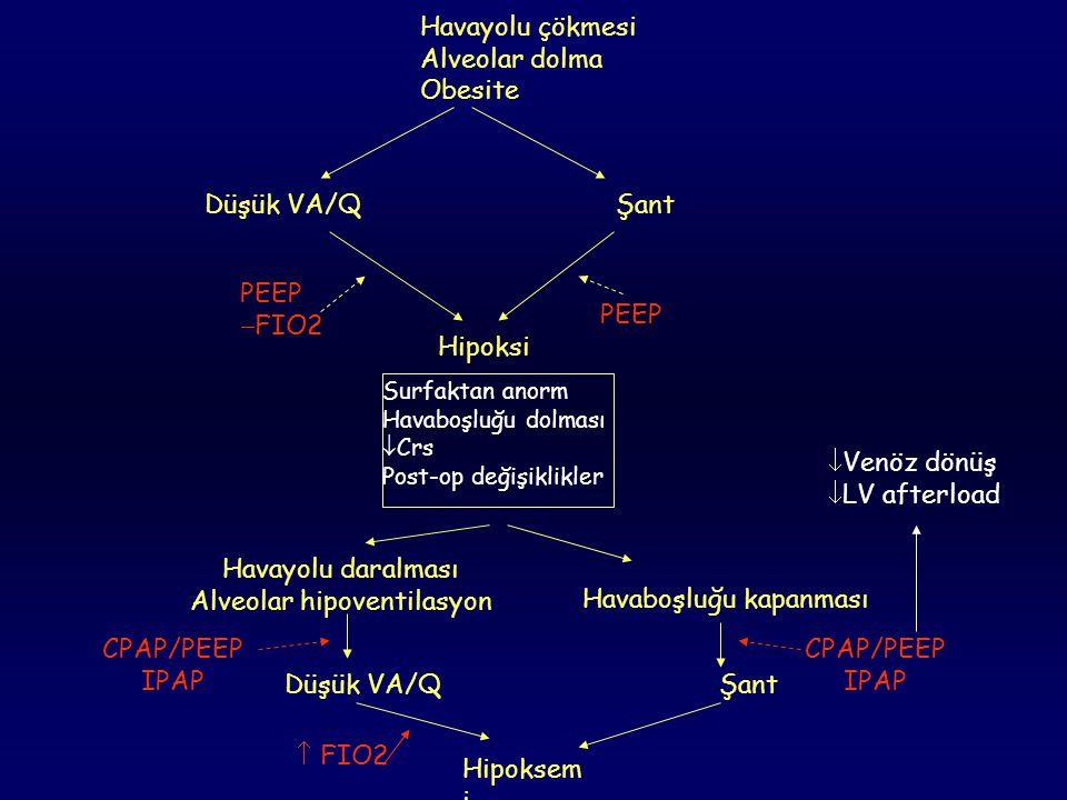 Alveolar hipoventilasyon
