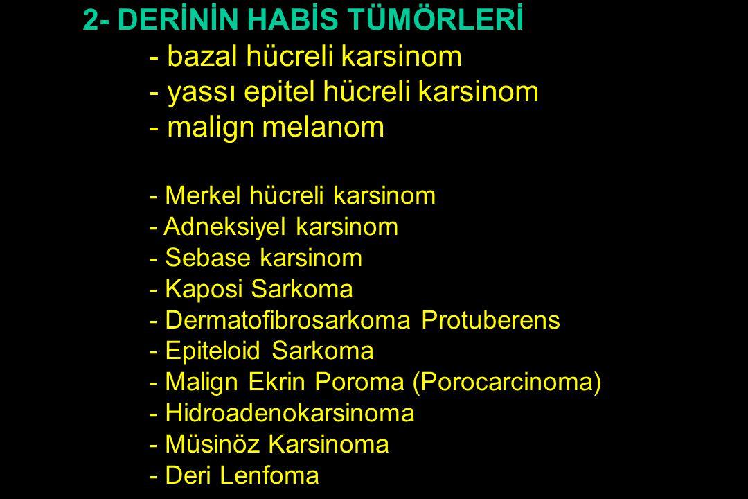 2- DERİNİN HABİS TÜMÖRLERİ - bazal hücreli karsinom