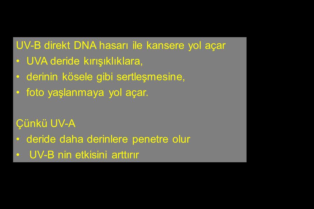 UV-B direkt DNA hasarı ile kansere yol açar