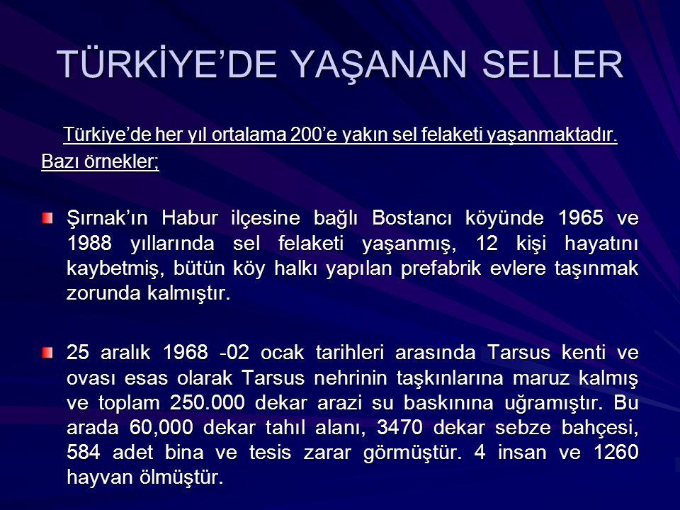 TÜRKİYE'DE YAŞANAN SELLER