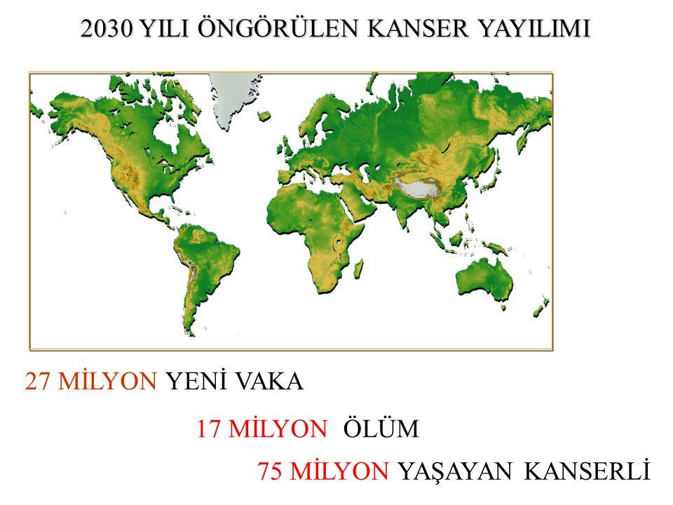 2030 YILI ÖNGÖRÜLEN KANSER YAYILIMI