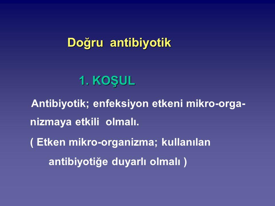 Antibiyotik; enfeksiyon etkeni mikro-orga-