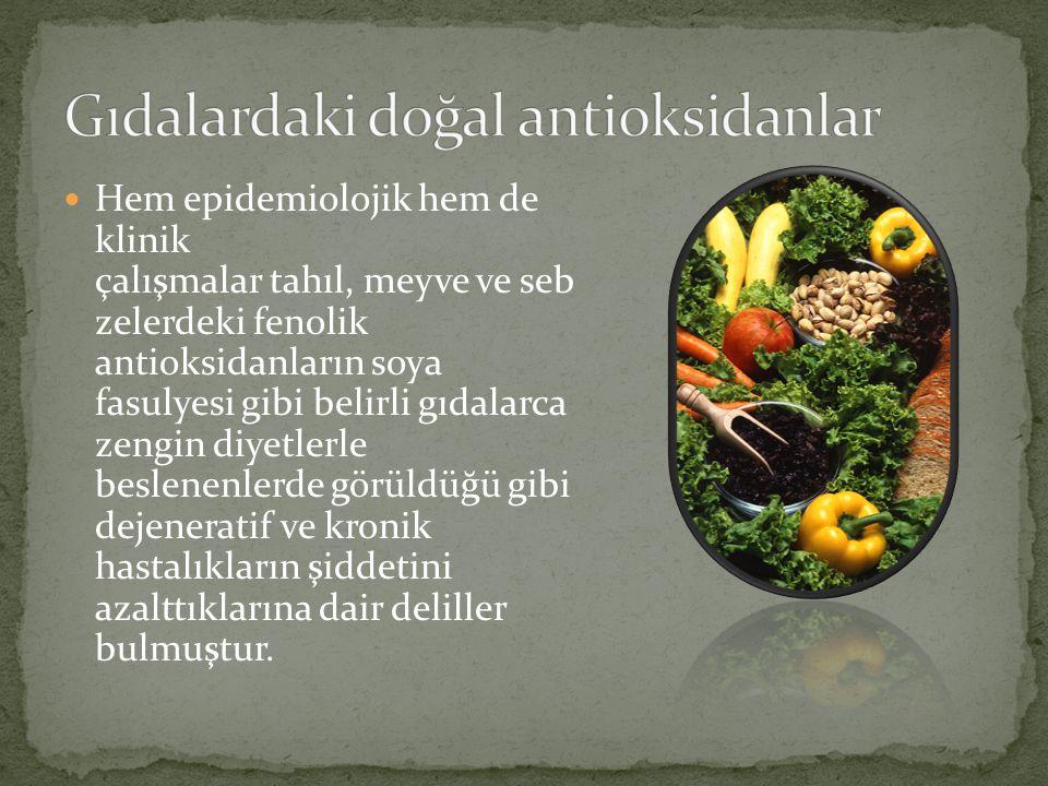 Gıdalardaki doğal antioksidanlar