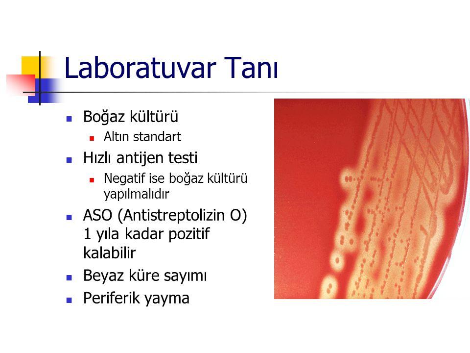 Laboratuvar Tanı Boğaz kültürü Hızlı antijen testi