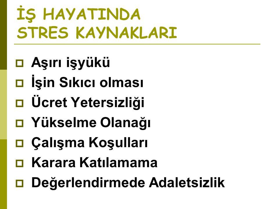 İŞ HAYATINDA STRES KAYNAKLARI