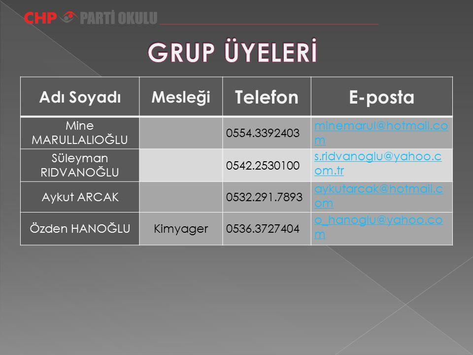 GRUP ÜYELERİ Telefon E-posta Adı Soyadı Mesleği Mine MARULLALIOĞLU