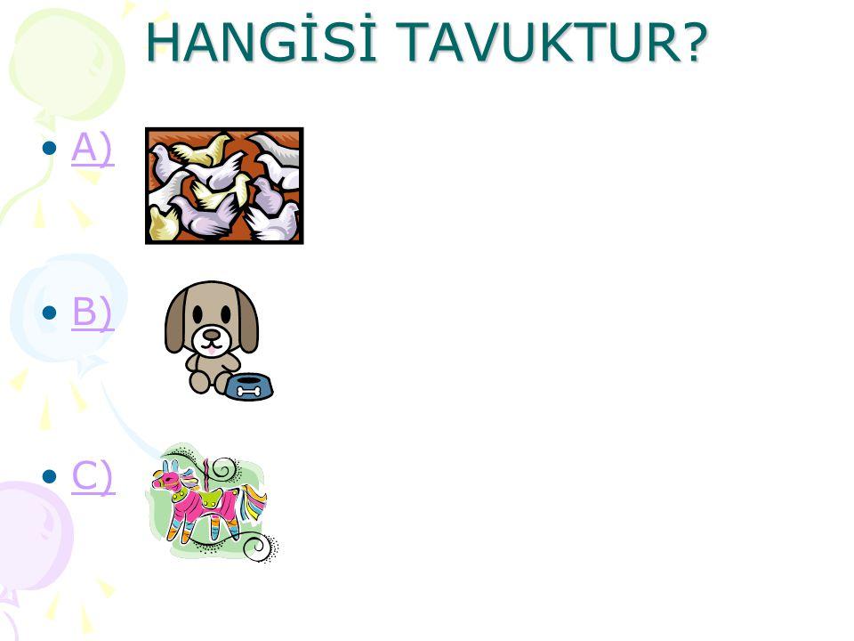 HANGİSİ TAVUKTUR A) B) C)
