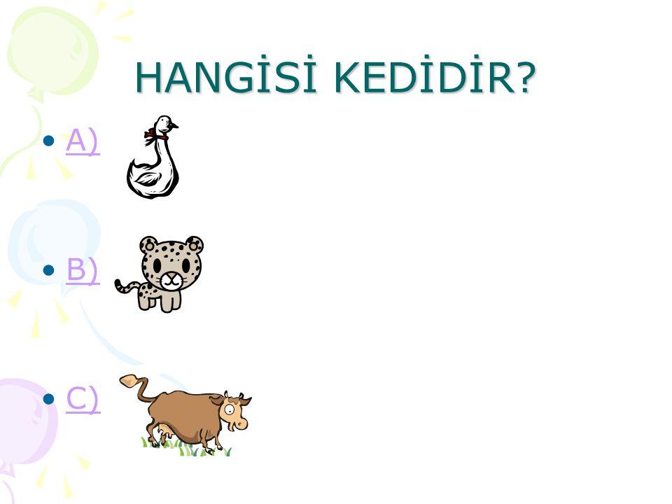 HANGİSİ KEDİDİR A) B) C)