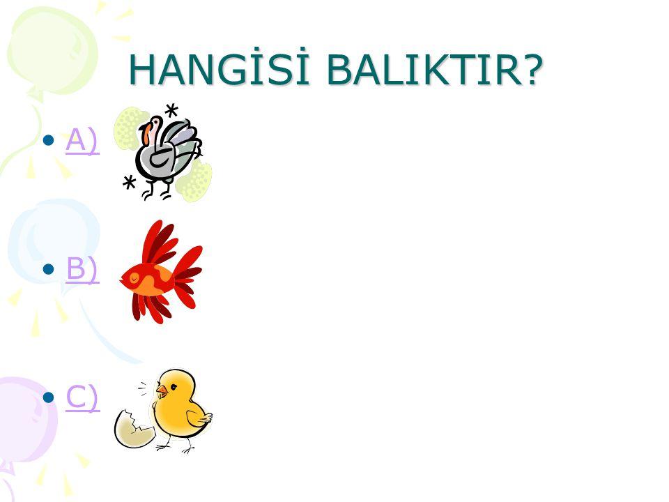 HANGİSİ BALIKTIR A) B) C)
